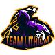 Teamlithium
