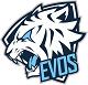 EVOS_ESPORTS_NewLogo